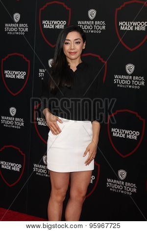 LOS ANGELES - JUL 14:  Aimee Garcia at the Warner Bros. Studio Tour Hollywood Expansion Official Unveiling, Stage 48: Script To Screen at the Warner Brothers Studio on July 14, 2015 in Burbank, CA