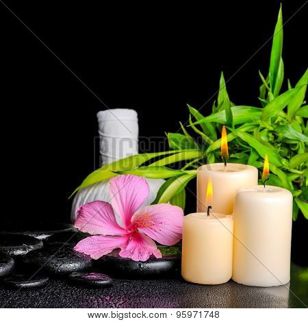 Spa Composition Of Pink Hibiscus Flower, Twig Bamboo, Thai Herbal Compress Balls And Candles On Zen