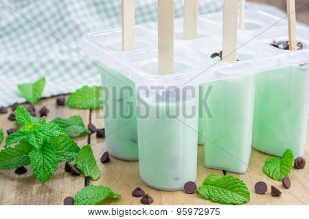 Mint And Chocolate Chips Yogurt Popsicles In Molds