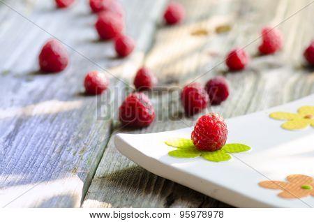 Rasberries On Modern White Plate On Wood