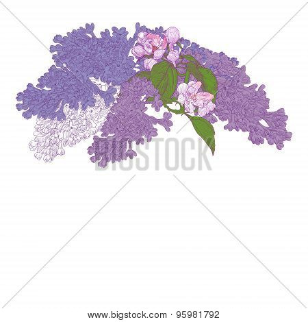 Greeting Card With Blooming Lilac And Apple Tree Twigs.