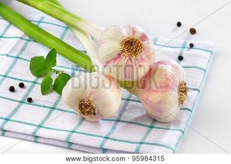 close up of fresh garlic bunch on checkered dishtowel