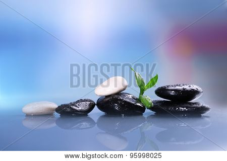 Wet spa stones with green leaves on turquoise background