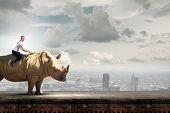 pic of rhino  - Young pretty fearless woman riding huge rhino - JPG