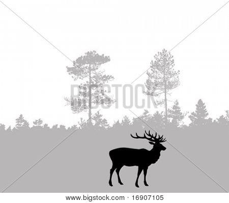 vector silhouette of the deer