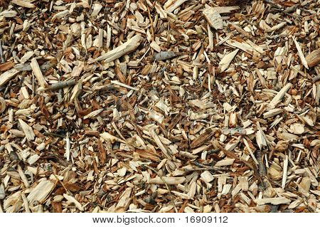 timber particles
