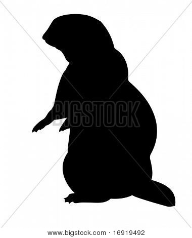 silhouette gopher on white background