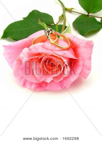 Pink Rose And Wedding And Engagement Ring