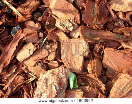 Natural Cedar Chip Background