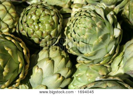 Artichokes In The Sun