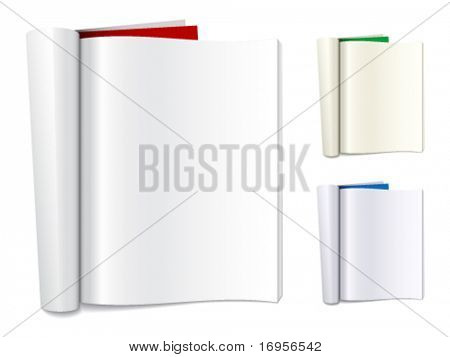 vector blank folded magazines