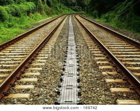 Wide Tracks