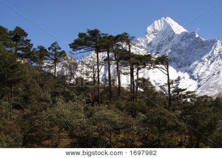 White Mountain Peak - Himalaya