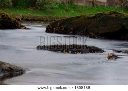 Tidal River