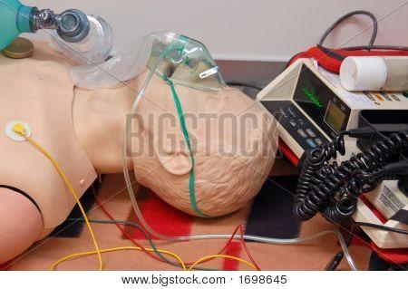 First-Aid Dummy