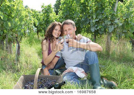 Couple of wine growers testing wine in vineyard
