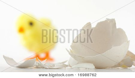 Eggshell Cracks And Toy Chicken