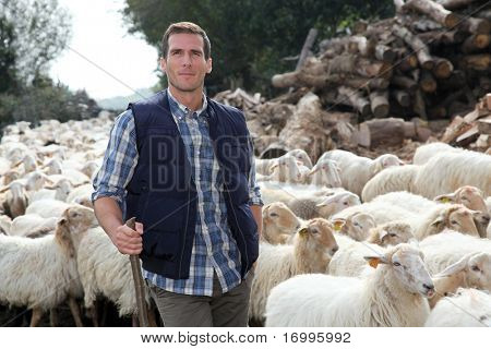 Shepherd standing by sheep in meadow