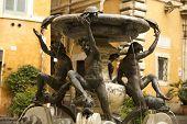 foto of adonis  - Fontana delle Tartarughe  - JPG