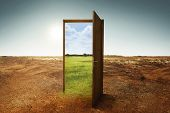 Open Wooden Door To The New World With Green Environment poster