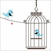 pic of serenade  - Birds couple in love - JPG