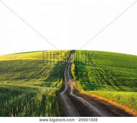 Beautiful landscape isolated on white background