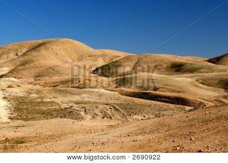 Jewish Desert