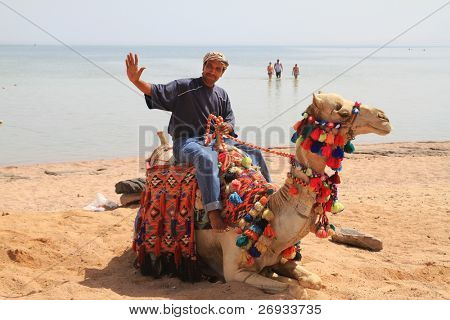 Egyptian man posing on his camel