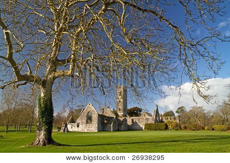 Abadia de Adare golf club - Irlanda