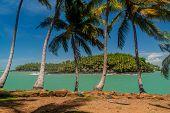 View Of Ile Saint Joseph Island From Ile Royale In Archipelago Of Iles Du Salut Islands Of Salvation poster