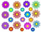 Flowers Set - Illustration Flowers, Flower. Single  Floral Pattern. Daisy. Painted Image. Plant. Sun poster