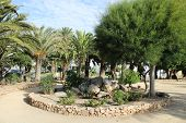 Recreational Area With Palm Trees And Beautiful Gazebo poster