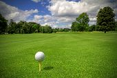 picture of golf  - Golf ball on tee in a beautiful golf club - JPG