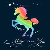 Rainbow Unicorn. Awesome Pretty Unicorn Pony Rainbow Background Outline Vector Illustration poster