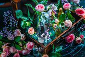 Flower Collection, Roses, And Gypsophila In Vintage Glass Bottles In A Suitcase. Botany And Perfume  poster