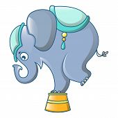 Elephant At Circus Icon. Cartoon Of Elephant At Circus Icon For Web Design Isolated On White Backgro poster