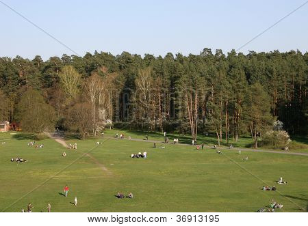 Sunny Weekend In Park Of Vilnius
