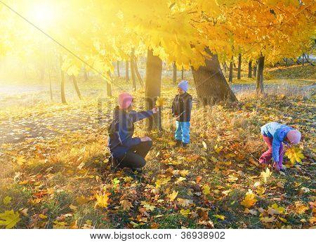Familie im Herbst Ahorn-park