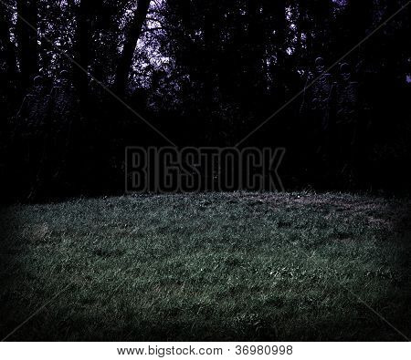 Scary Meadow at Night Halloween Background