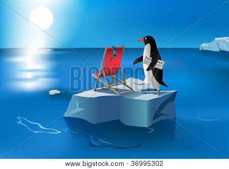 Penguin Sunbath