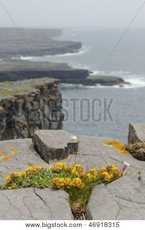 Irish landscape - view from Dun Aengus, an ancient fort on Aran Islands, Ireland