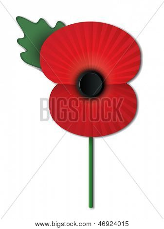 Remembrance Day poppy isolated on white background. Also available in vector format.