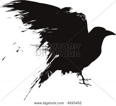 Grunge-bird-crow-raven