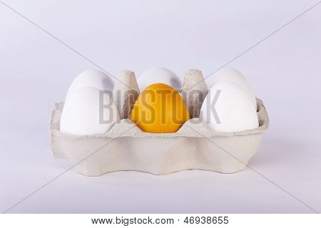White And Orange Eggs In Cardboard Packaging On Plain Background