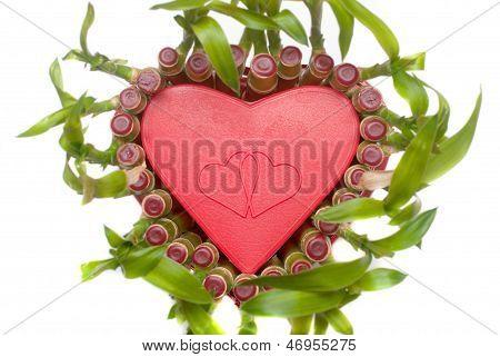 Lucky Bamboo Heart Shape