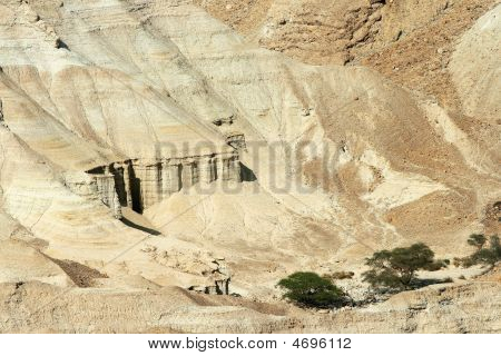Bible Caves On The Coast Of The Dead Sea