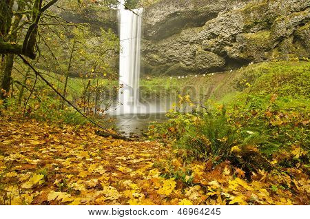 Beautiful Silver Falls in Fall Color at Silver Falls Sate Park