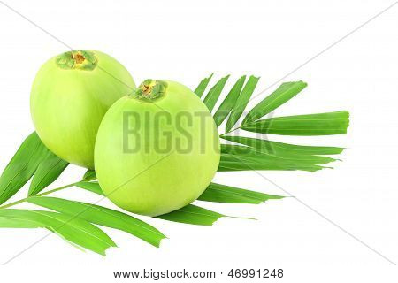 Two green coconuts and leaf on white background.