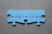 stock photo of darwin  - The word Evolution against background of human DNA sequence printed on matched jigsaw pieces - JPG