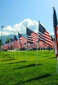 foto of veterans  - American Flags wave in the wind at a memorial in Utah - JPG